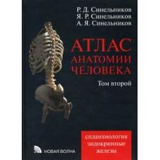 Синельников Р.Д.   Атлас анатомии человека. т.2