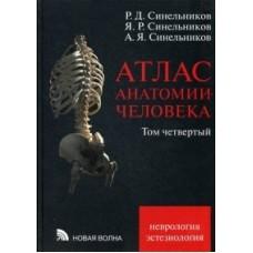 Синельников Р.Д.   Атлас анатомии человека. т.4