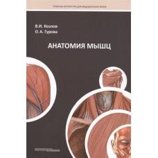 Козлов В.И.   Анатомия мышц