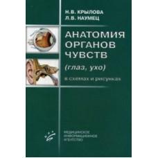 Крылова Н.В.   Анатомия органов чувств ( глаз, ухо)