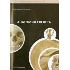 Козлов В.И.   Анатомия скелета